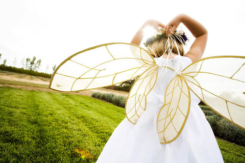 fairy wings on a little girl