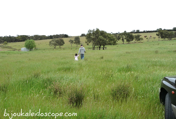 Hannah and daddy running through a grassy field