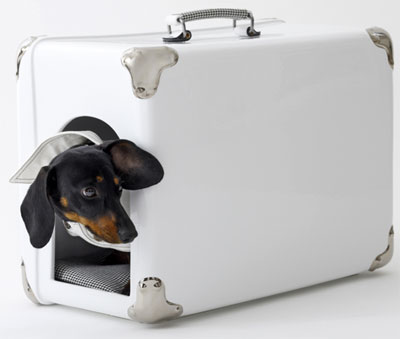 Pet carrier, via RetroToGo