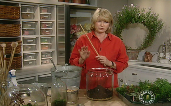 Martha Stewart setting up my terrarium