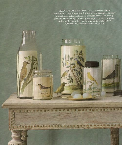 Bird prints in glass jar, via Martha Stewart
