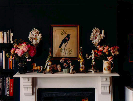 Pretty reds and pinks and a bird print against a black wall