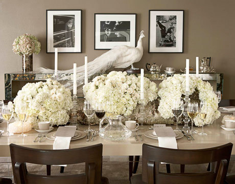 A beautiful white peacock in a taupe dining room