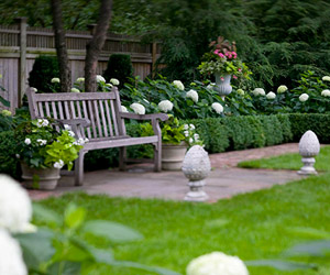 A place to read or have a quiet chat with a friend amongst white hydrangeas