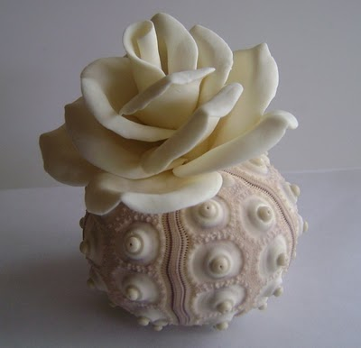 White flower in white shell vase via Beach House Living