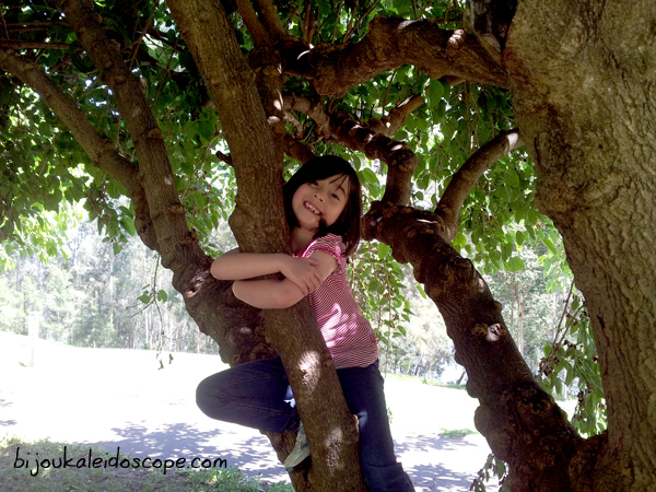 Hannah up a mulberry tree