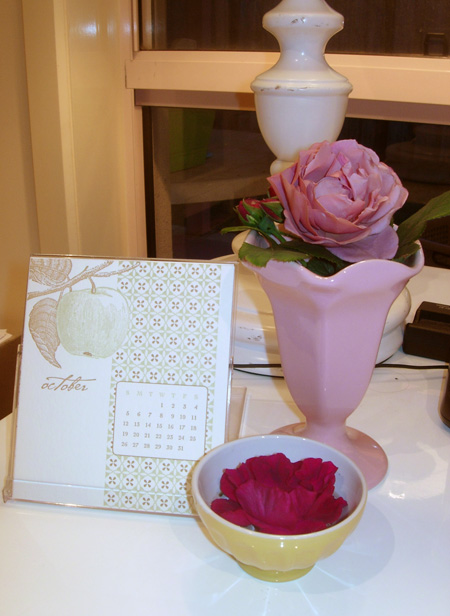 A vignette of my pink ginger rose on my desk