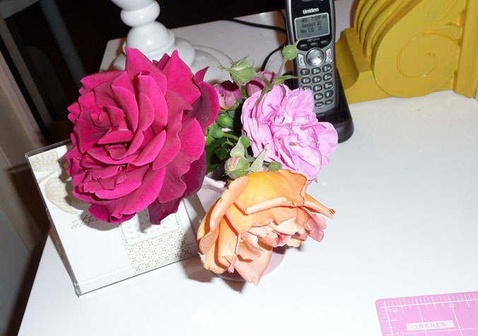 Beautiful roses from our garden