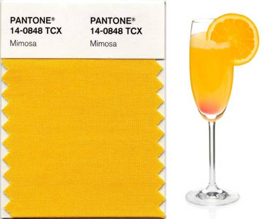 Pantone's Colour of the Year 2009. The brilliant happy mimosa
