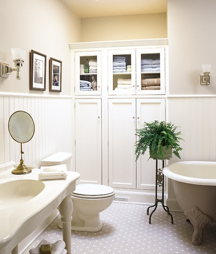 Ferns in the bathroom, via This Old House