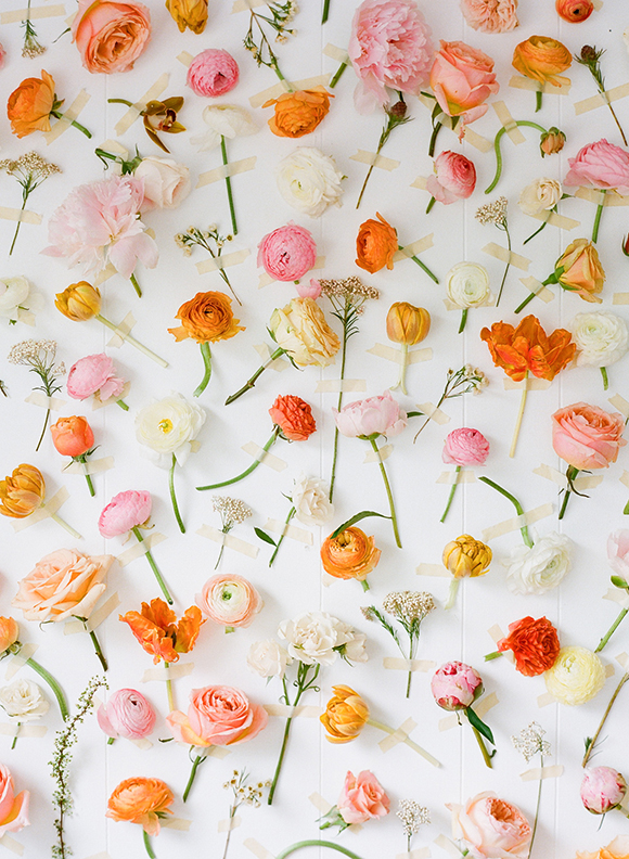 Orange and pink flowers on white background